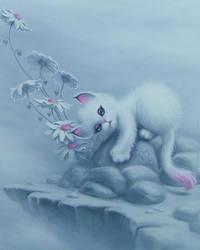 Bobcat Daisies