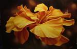 Fairy on yellow flower by ChristopherPollari