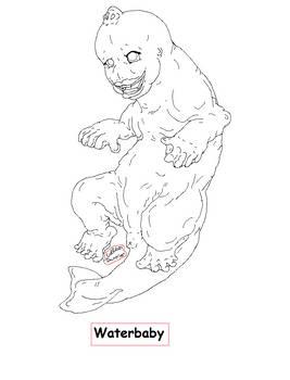 Waterbaby species