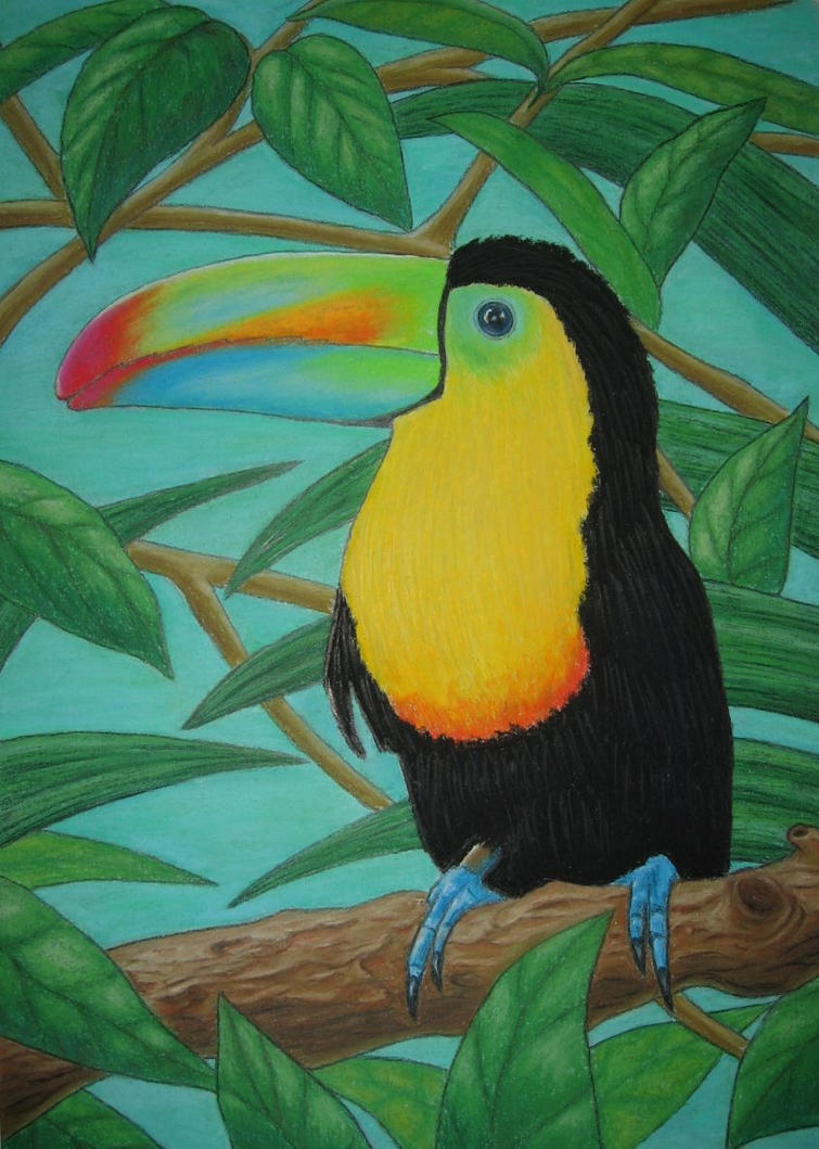 Tropical bird - pastel drawing by Kligan