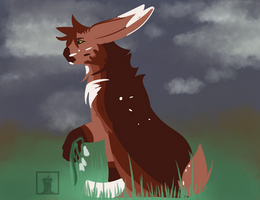 late bloomer vulpes AC