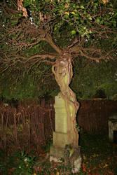 Landau cemetery Stock 02 by Malleni-Stock