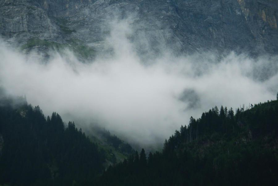 Fog stock 02