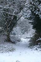 Snow stock 63 by Malleni-Stock