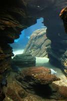 Aquarium Stock 34 by Malleni-Stock