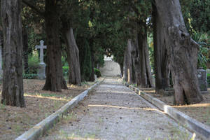 Pula cemetery Stock 05 by Malleni-Stock