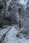 Narnia Stock 03
