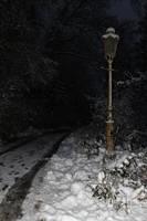 Narnia Stock 06 by Malleni-Stock