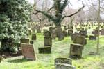 Jewish Cemetery Stock 42