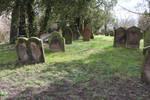 Jewish Cemetery Stock 39