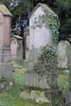 Jewish Cemetery Stock 45