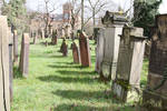 Jewish Cemetery Stock 43