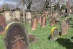 Jewish Cemetery Stock 41