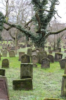 Jewish Cemetery Stock 48
