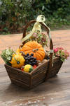 Autumn basket Stock 11