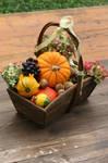Autumn basket Stock 12