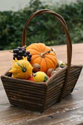 Autumn basket Stock 22