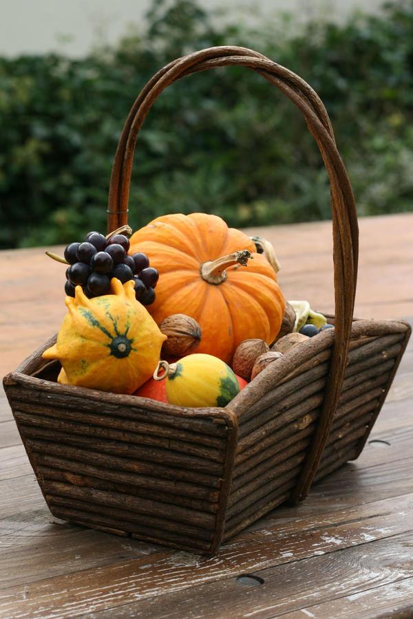 Autumn basket Stock 22 by Malleni-Stock