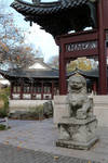 Chinese garden Stock 11