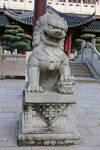 Chinese garden Stock 10