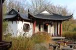 Chinese garden Stock 21