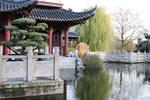 Chinese garden Stock 26