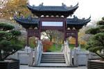 Chinese garden Stock 38