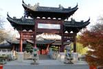 Chinese garden Stock 39