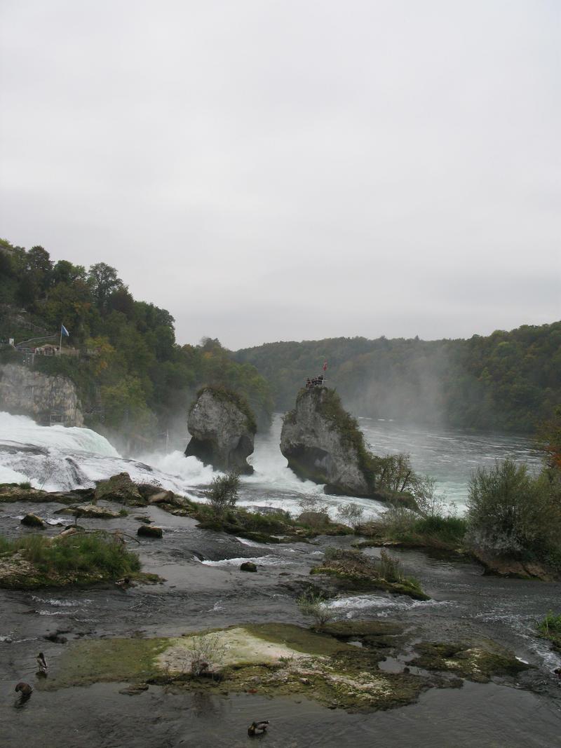 Rhine Falls Stock 08