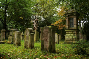 Landau cemetery Stock 012 by Malleni-Stock