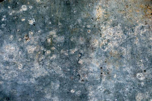 Texture 113 by Malleni-Stock