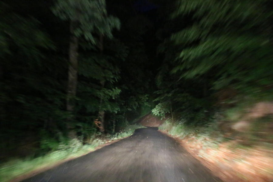 Dark forest road Stock 12 by Malleni-Stock