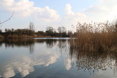 Lake Stock 12 by Malleni-Stock