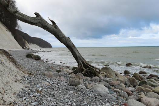 Ruegen island Stock 178