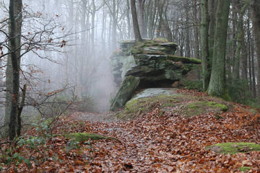 Fog Stock 09 by Malleni-Stock