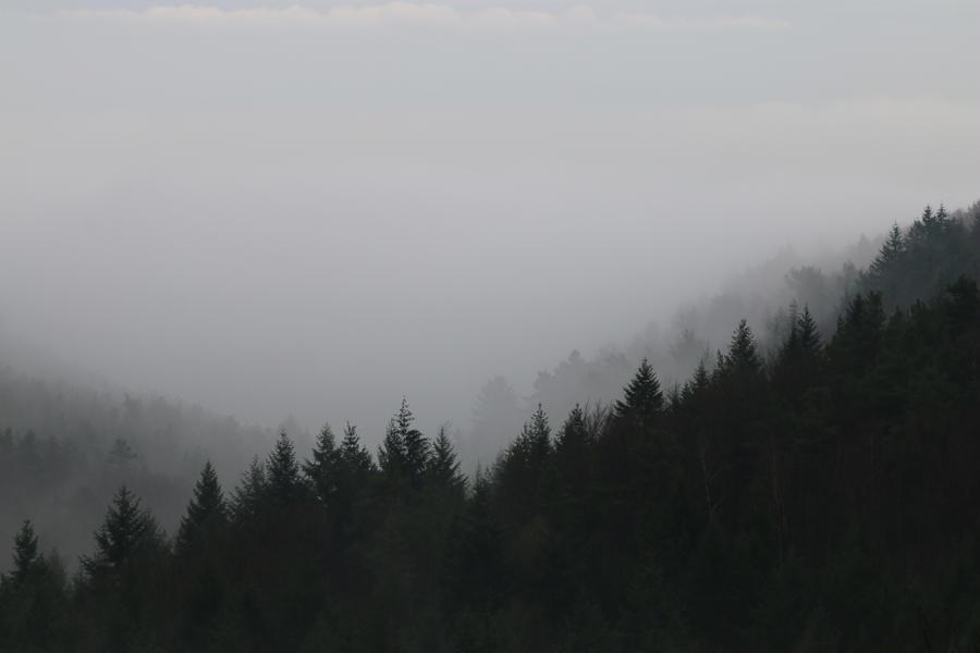 Fog Stock 01 by Malleni-Stock