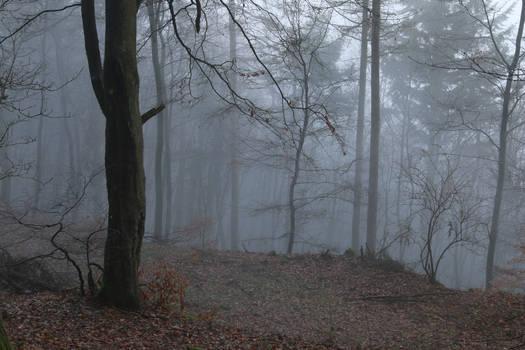 Fog Stock 18