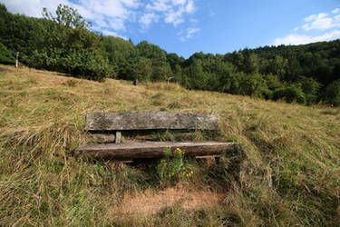 Palatinate Forest Stock 05 by Malleni-Stock