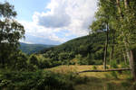 Palatinate Forest Stock 07