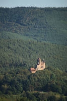 Palatinate Forest Stock 63 by Malleni-Stock