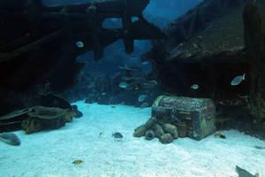 Aquarium Stock 71 (private use)