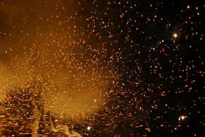 Firework Stock 237