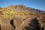 Tenerife Stock 030
