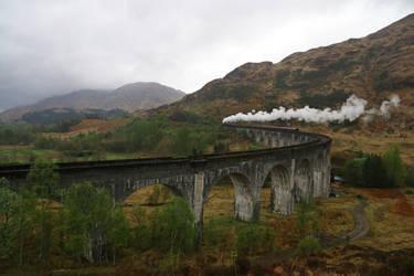Scotland Stock 176
