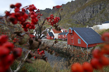 Norway Stock 097 by Malleni-Stock