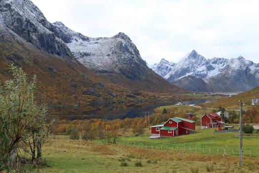 Norway Stock 184
