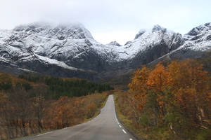 Norway Stock 317 by Malleni-Stock