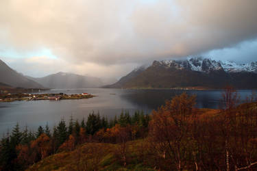 Norway Stock 345 by Malleni-Stock