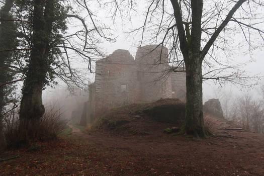 Neuscharfeneck Ruins Stock 40