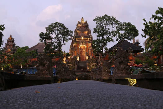 Bali Stock 47